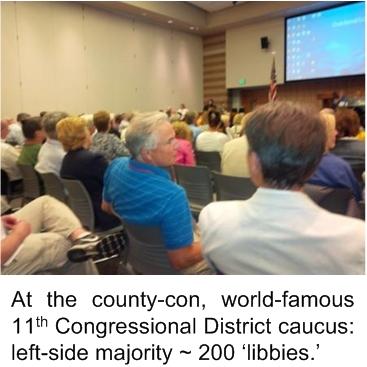 02_County_Con_Majority
