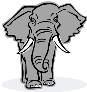 RogueElephant